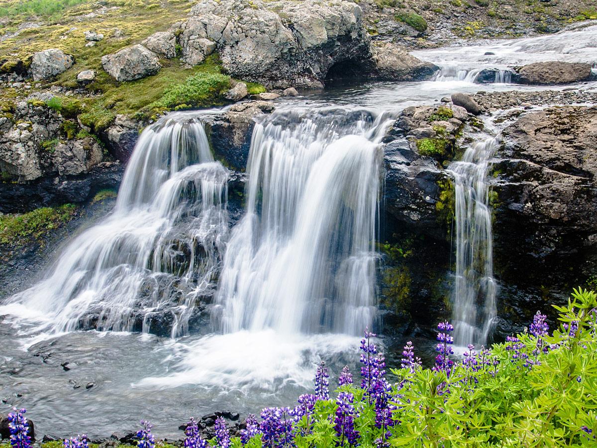 ZEW_blog_Islandia_1web